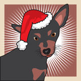 De hond van Christams stock fotografie