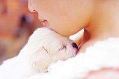 De hond van de baby Royalty-vrije Stock Afbeeldingen
