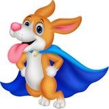De Hond van de beeldverhaal het Super Held Vliegen Stock Foto