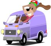 De hond van de bestuurder stock afbeeldingen
