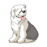 De hond van de bobtail Stock Illustratie