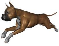 De hond van de bokser royalty-vrije illustratie