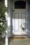 De Hond van de brak Royalty-vrije Stock Afbeelding
