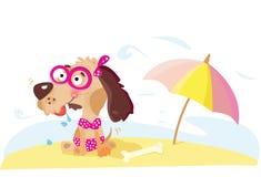De hond van de dame op het strand stock illustratie