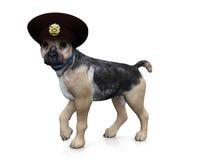 De hond van de politie Royalty-vrije Illustratie