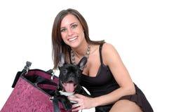 De Hond van de reis Royalty-vrije Stock Foto