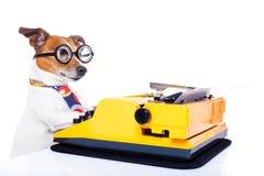 De hond van de secretaresseschrijfmachine royalty-vrije stock fotografie