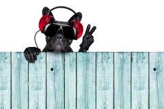 De hond van DJ Royalty-vrije Stock Afbeeldingen