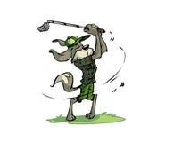 De hond van Golfing Stock Afbeeldingen