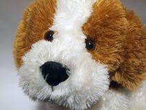 De hond van het stuk speelgoed Royalty-vrije Stock Foto