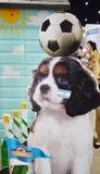 De hond van Thailand toont 2014 BANGKOK, THAILAND 28,2014 Juni banner van hond sfood product, het centrum Mueangthong Thanee van  Stock Fotografie