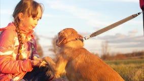 De hond voert bevel uit om eigenaarpoot te geven Het meisje loopt met hond stock videobeelden