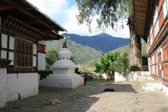 De honden rusten in de binnenplaats van Kyichu Lhakhang in Paro (Bhutan) Stock Foto's
