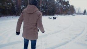 De honden van mensentreinen om een stok in een de winterbos te brengen stock video