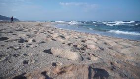 De hondlooppas op strand het spelen wordt geamuseerd die stock footage