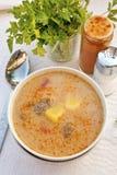 De Hongaarse heerlijke soep van de varkensvleeshutspot Stock Foto