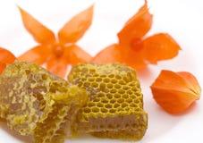 De honingraten van de honing stock foto's