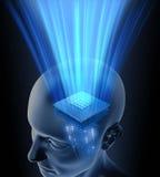 De hoofd Bewerker van Hersenen Stock Afbeeldingen