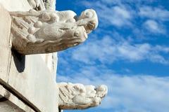 De Hoofd Chinese Waterpijpen van de draak Stock Afbeelding
