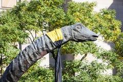 De Hoofd en Lange Hals van de Brachiosaurusdinosaurus in de Bomen Royalty-vrije Stock Foto