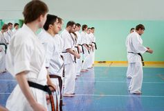 De hoofd karate geeft een les Stock Afbeelding