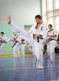 De hoofd karate geeft een les Stock Fotografie