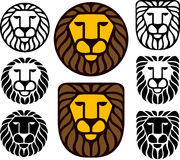 De Hoofden van de leeuw - Reeks van Acht Stock Foto
