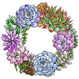 De hoofdillustratie van Succulent bloembroodje Stock Afbeeldingen