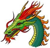 De hoofdkleur van de draak Stock Fotografie