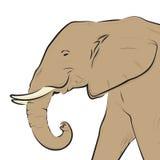 De hoofdtekening van de olifant die op wit wordt geïsoleerdn Royalty-vrije Stock Afbeelding