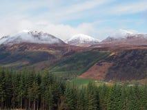 De hooglanden van Schotland op het gebied van de Lentelaggan Stock Fotografie