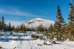 De hoogste berg in de Tsjechische Republiek Royalty-vrije Stock Afbeelding