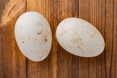 De hoogste eieren van de meningsgans op hout Royalty-vrije Stock Afbeelding