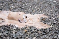 De hoogste gelaten vallen smelting van de meningschocolade roomijs op grond Royalty-vrije Stock Afbeelding