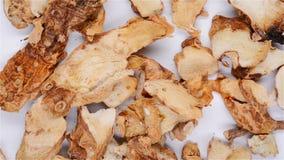 de hoogste geneeskunde van het menings Chinese kruid van Anemarrhenae Rhizoma of Gemeenschappelijke Anemarrhena roteert stock videobeelden
