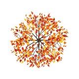 De hoogste mening van de de herfstboom royalty-vrije illustratie