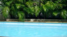 De hoogste mening van kristal schone waterspiegel in zwembad en de palmen, zon glanzen heldere water-pool lijnachtergrond stock videobeelden