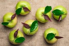 De hoogste mening van zeven groene appelen met water daalt en gaat op br weg Stock Foto's