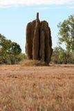 De Hoop van de termiet - Kakadu Nationaal Park, Australië Stock Afbeelding