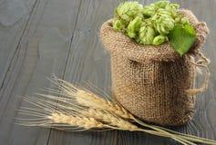 De Hopkegels van bierbrouweningrediënten in zak en tarweoren op donkere houten achtergrond Het concept van de bierbrouwerij De ac Stock Afbeelding
