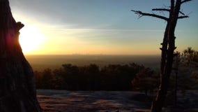 De Horizon van Atlanta met Groen royalty-vrije stock afbeelding