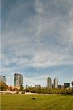 De horizon van Bellevue Stock Foto's