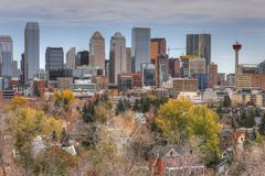 De horizon van Calgary, Canada met dalingsgebladerte stock afbeelding
