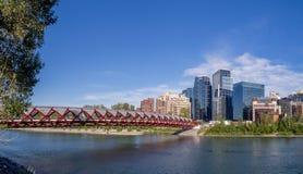 De horizon van Calgary in de zomer Royalty-vrije Stock Afbeelding