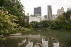 De horizon van het Central Park en van Manhattan Stock Foto's