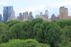 De horizon van Manhattan over Central Park Stock Afbeelding