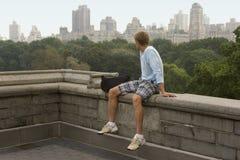 De horizon van Manhattan van centraal park Stock Afbeeldingen