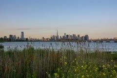 De Horizon van Manhattan van Liberty State Park Royalty-vrije Stock Afbeelding