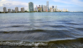 De horizon van Miami, Florida Stock Foto