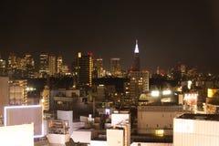 De Horizon van Tokyo in aardige dag stock foto's